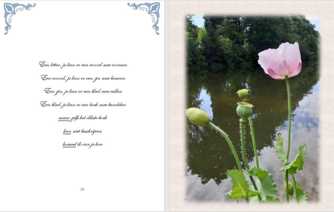 Mijmeringen voorbeeld gedicht 2